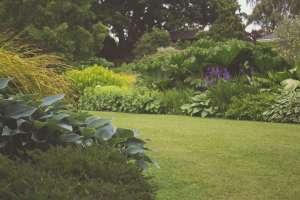garden-drei